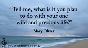 Wild and precious life quote small 2-01-01